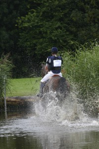 Horse water jump